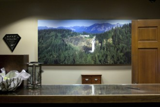 hotel_reception_waterfall_leikattu