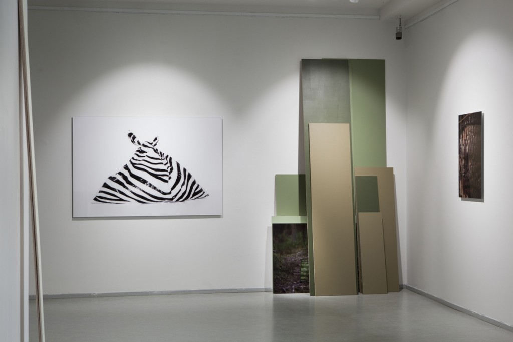 Installation shot at Jyväskylä Art Museum / 2015